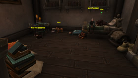 Hundepension in Boralus